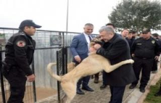 Dedektör Köpeklerin Eğitimini İzledi