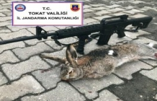 İzinsiz Tavşan Avına '2 Bin 312 TL' Ceza