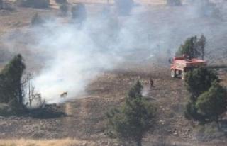 15 Hektarlık Ormanlık Alan Yandı