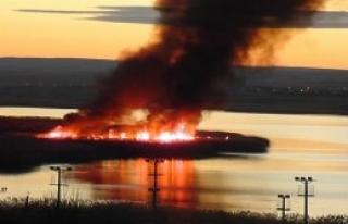 Mogan Gölü'nde Yangın