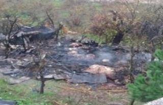 Ordu'da İki Ayrı Yangında, 2 Kişi Öldü