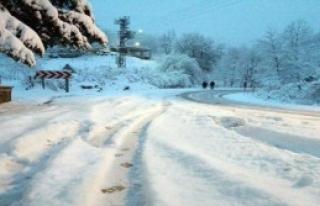 Ordu'da Kar Yolları Kapattı