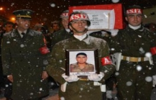 Şehit Asker Tatvan'da Toprağa Verildi