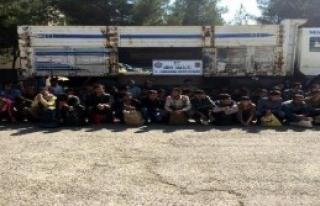 Kamyonda 88 Kaçak Yakalandı