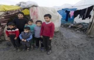 Mültecilerin Günlük Gıda Harcaması 3 Lira