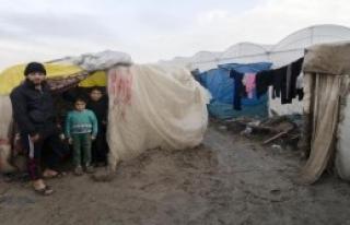 Suriyelilerin Çadır Çilesi