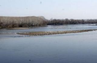 Taşan Nehirler Susuz Kaldı