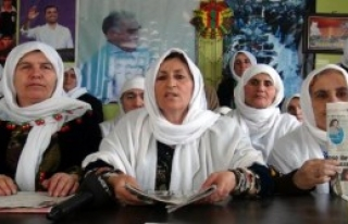 Van'da Kadınlar Nihat Doğan'ı Kınadı