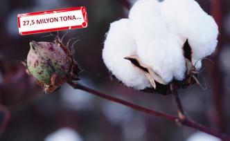 Dünya pamuk tüketimi 27,5 milyon tona koşuyor!