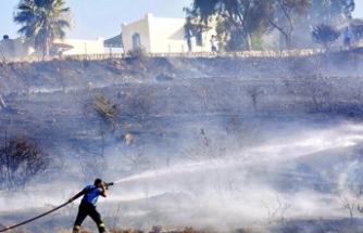 Bodrum'da korkutan yangın! Yazlık sitelere de sıçradı