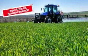 Döviz kuru dalgalanmalarında 'tarım' endişesi