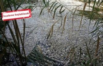 Manisa'da endişelendiren görüntü