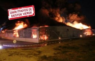 Aydın'da süt ürünleri fabrikası alevlere teslim oldu!