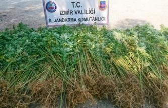İzmir'de uyuşturucuya darbe üstüne darbe