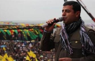 AİHM'den Selahattin Demirtaş kararı