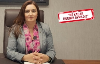 CHP'li Kılıç 100 günlük eylem planını mercek altına aldı