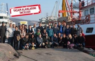 Koruma altındaki deniz canlıları için Foça'da toplandılar
