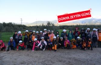 Toprak ve Çocuk Programı'ndan ilkokul öğrencilerine zeytin hasadı etkinliği