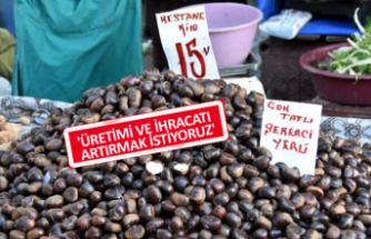 Türk kestanesine en fazla talep İtalya'dan