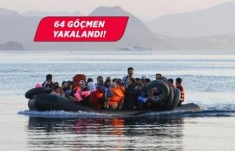 Edirne'de düzensiz göçmen yakalandı