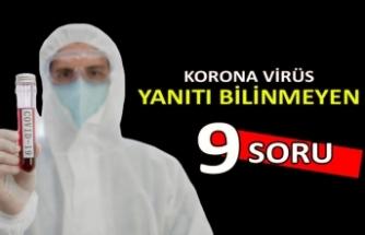 Koronavirüs salgınıyla ilgili yanıtı hala bilinmeyen 9 soru