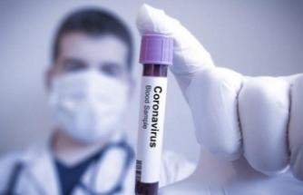Koronavirüsten can kaybı 214, toplam vaka sayısı 13 bin 532