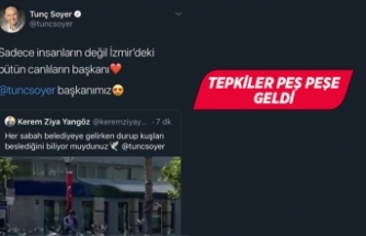 AK Parti'den Soyer'e trol hesap çıkışı!
