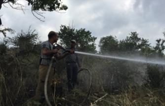 Tire'de yangında 15 dönüm alan zarar gördü