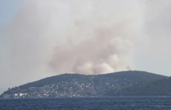 İstanbul Heybeliada'da orman yangını kontrol altına alındı