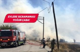 İzmir'de yangın paniği!