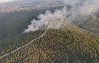 Çanakkale'de 2 dönüm ormanlık alan yandı