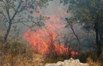 Çanakkale'de tarihi ören yerinde yangın!