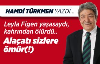 Hamdi Türkmen yazdı: Leyla Figen yaşasaydı, kahrından ölürdü..