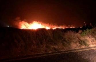 İzmir Karaburun'da yangın!