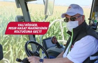 İzmir Valisi Köşger, mısır hasadına katıldı