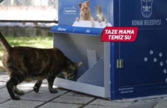 Konak'ta can dostlara mamamatik hizmeti
