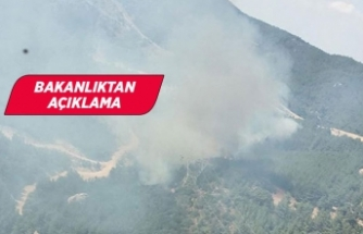 Menderes'te 8 gün sonra ikinci yangın