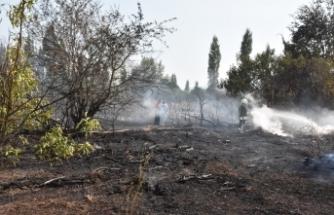 Muğla'da çıkan yangında bir kişi hayatını kaybetti