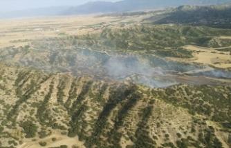 Denizli'de 1 hektar ormanlık alan zarar gördü
