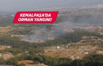 İzmir'de ormanlık alanda yangın çıktı