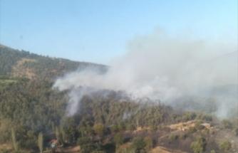 İzmir Kiraz'da çıkan orman yangını söndürüldü