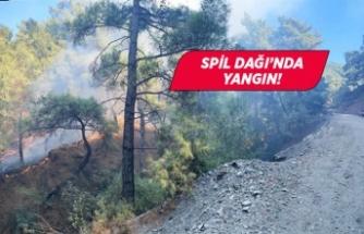Manisa Spil Dağı'nda orman yangını!