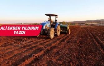 Mazot, gübre, hayvancılık desteği 787 milyon TL azalacak