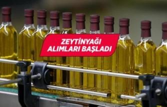 Tariş zeytinyağı alım fiyatını 26 lira olarak belirledi