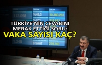 Türkiye'nin cevabını merak ettiği soru: Vaka sayısı kaç?