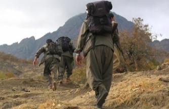 İkna edilen 5 PKK'lı terörist teslim oldu