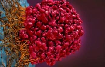 Bakır tabanlı nano parçacıklar kanser hücrelerini yok edebiliyor