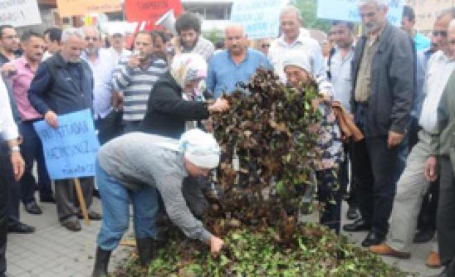 Rize'de Çay Üreticilerinden Protesto