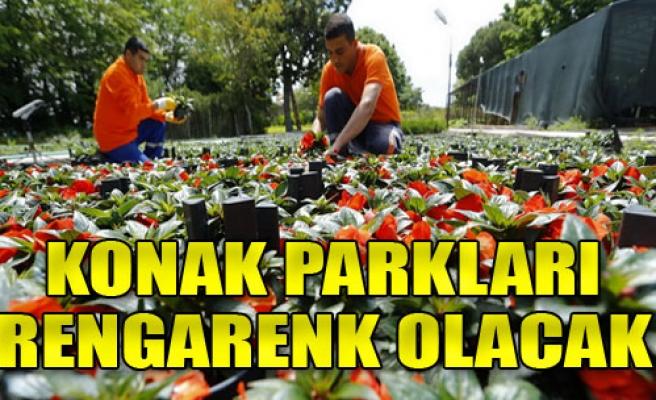 10 Bin Çiçek Dikildi, 120 Bin de Yolda