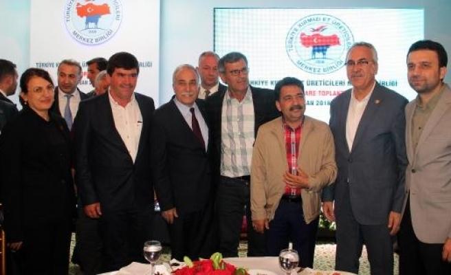 Bakan Fakıbaba: Şanlıurfa, kaba yemin yüzde 40'ını karşılayacak